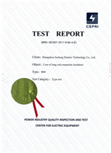 CEPRI test report